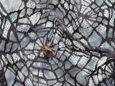 darquer-rumigny-spider